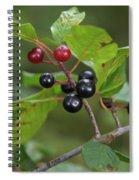 Alder Buckthorn Spiral Notebook