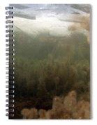 Algae In A Frozen Pond Spiral Notebook