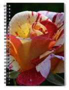 All American Magic Rose Spiral Notebook