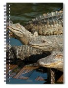 Alligator Pool Party Spiral Notebook