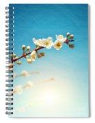 Almond Branch Spiral Notebook