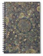 Amoeba Proteus Lm Spiral Notebook
