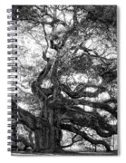 Angel Oak Spiral Notebook