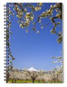 Apple Blossom Trees In Hood River Spiral Notebook