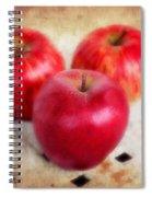 Apples Spiral Notebook