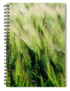Barley, Co Down Spiral Notebook