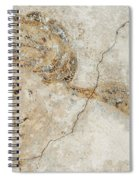 Baroque Mural Painting Spiral Notebook