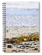 Beach Detail On Pacific Ocean Coast Spiral Notebook