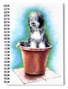 Beardie In A Pot Spiral Notebook
