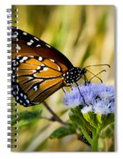 Behold The Queen Spiral Notebook