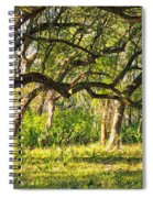 Bent Trees Spiral Notebook
