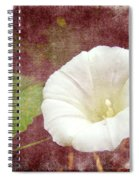 Bindweed - The Wild Perennial Morning Glory Spiral Notebook