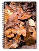 Bioluminescence Spiral Notebook