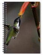 Black-chinned Hummingbird  Spiral Notebook