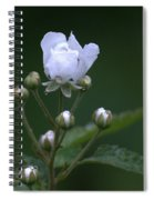 Blackberry Vine Flower Spiral Notebook