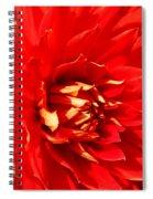 Blazing Red Spiral Notebook
