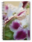 Blush Spiral Notebook