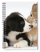 Border Collie Pup And Sandy Spiral Notebook