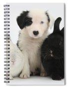 Border Collie Pups With Black Rabbit Spiral Notebook