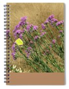 Butterfly Love Spiral Notebook