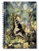 Butterfly On Yellow Flowers Spiral Notebook