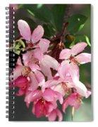 Buzzing Beauty Spiral Notebook