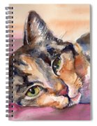 Calico Kitty Spiral Notebook