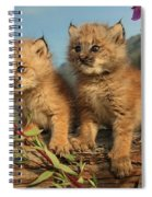 Canadian Lynx Kittens, Alaska Spiral Notebook