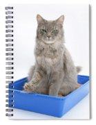 Cat Using Litter Tray Spiral Notebook