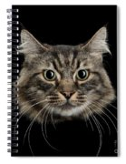 Close Up Of Cats Face Spiral Notebook