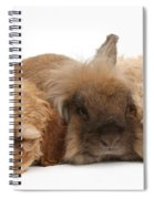 Cockerpoo Puppies And Rabbit Spiral Notebook