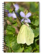 Common Brimstone  Spiral Notebook