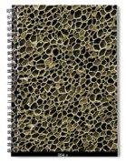 Cork Wood, Sem Spiral Notebook