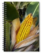 Corn Cob Spiral Notebook