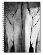 Cow Skull Spiral Notebook