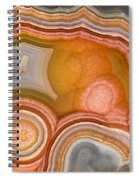 Cross-section Of Mexican Agate Spiral Notebook