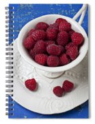 Cup Full Of Raspberries Spiral Notebook