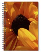Cutleaf Tiger Eye Spiral Notebook