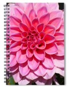 Dahlia Named Lucky Number Spiral Notebook