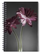 Daisy Mae Too Spiral Notebook