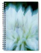 Dancing Angels - 1 Spiral Notebook