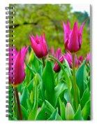Dancing Tulips Spiral Notebook