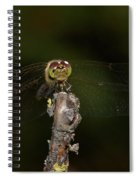 Darter 8 Spiral Notebook
