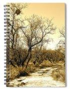 Desert Trail Spiral Notebook