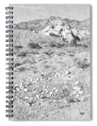 Desert Washout Spiral Notebook