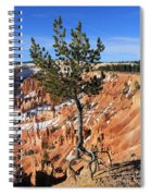 Determined Tree Spiral Notebook