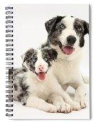 Dog And Puppy Spiral Notebook