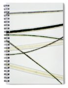 Dog Hair Spiral Notebook