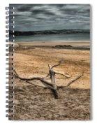 Driftwood 2 Spiral Notebook
