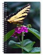 Eastern Tiger Swallowtail 3 Spiral Notebook